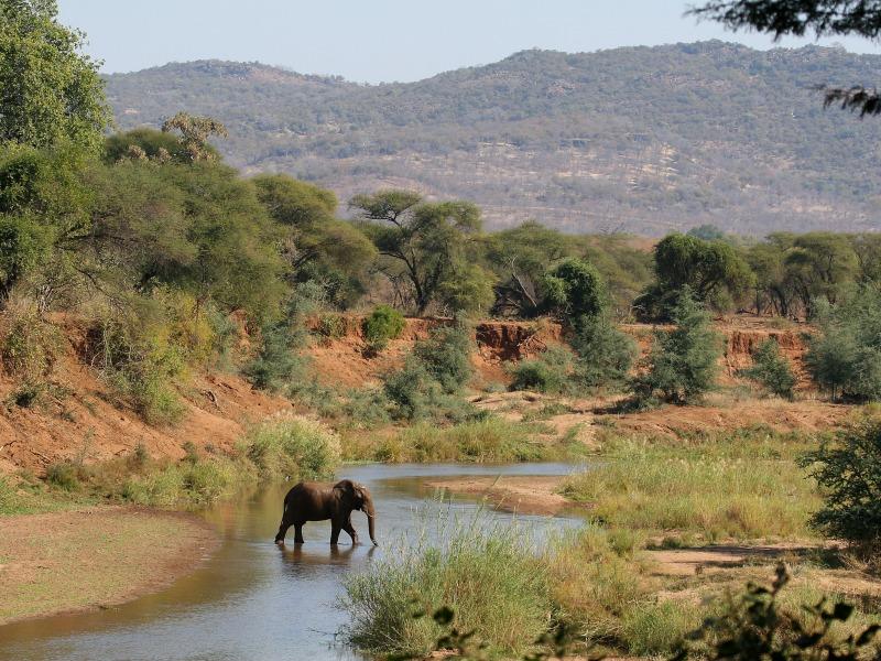 Резултат с изображение за Трансваал - провинция в Южна Африка.