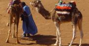 Екскурзия в Мароко Имперски тур за Златна възраст 55+, Мароко